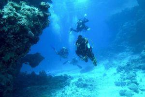 Activités Nautiques Plongée sous-marine à Porto Vecchio et Bonifacio